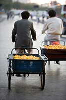 Rear view of man pulling load of oranges on bicycle, Shanghai, China