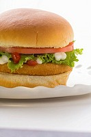 Chicken burger with tomato, lettuce, mayonnaise & ketchup (thumbnail)