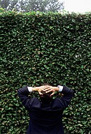 Frustrated businessman looking at hedge