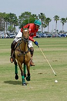 Polo match Sarasota Florida. USA.