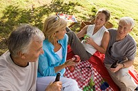 Elderly couples on a picnic
