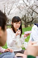 Young people enjoying lunch surrounded with cherry blossoms, front view, side view, Japan