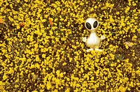 Gold alien doll lying in bed of yellow flowers