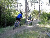 Rear view of two men mountain biking