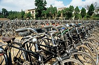 Bicycles in a row (thumbnail)
