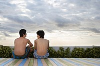Two teenage boys 16_17 sitting on wooden deck back view