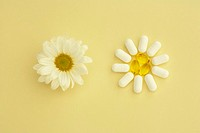 Conceptual image of aspirin tablets and omega 3 gelcaps arranged into a flower shape next to a chamomile flower on a pastel yellow background