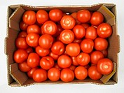 Tomatoes in a cardboard box