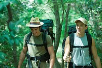 Two hikers walking through forest