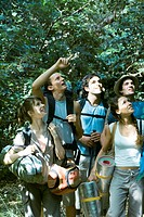 Group of hikers looking up