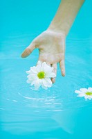 Young woman touching daisy floating on surface of water
