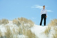Businessman standing on dune, looking at distance