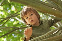 ´Boy 6-7 climbing tree, portrait´
