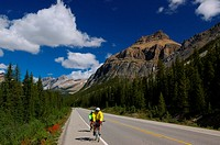 Bicyclists on the Icefields Parkway Banff National Park