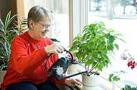 Senior woman watering plant