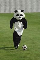 Panda Playing Football