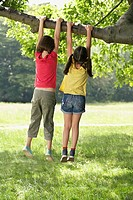 Two girls 7_9 hanging from tree