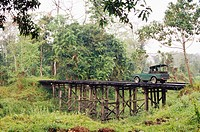 Safari Car on wooden bridge in Kaziranga National Park , Assam , India