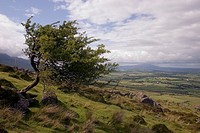 Pastoral from Comeragh Mountains, Co Waterford, Ireland