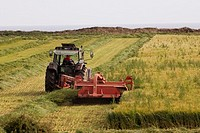 Silage Cutting, Co Waterford, Ireland