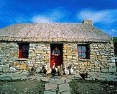 Livestock, Fresian Cattle In Front Of, Newgrange,