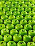 Many ´Granny Smith´ apples Not available for exclusive usages