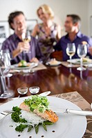 Three friends having lunch at table, smiling focus on plate of salmon and salad in foreground