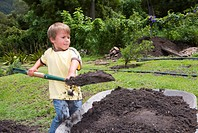 Boy 4-6 using spade to fill wheelbarrow with soil in garden