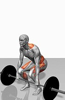 Barbell deadlift Part 2 of 2 (thumbnail)
