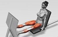 Leg press (thumbnail)