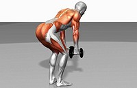 Dumbbell rear lateral raise Part 2 of 2