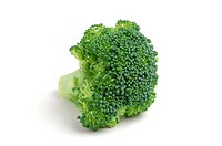 Floret of Broccoli on white background