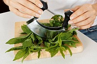 Woman In Kitchen Chopping Mint With Hachoir / Mezzaluna