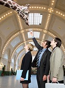 Businesspeople feeding giraffe in train station