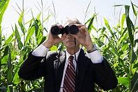 Businessman with binoculars in cornfield