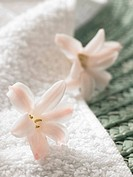 Flower decoration on top of a towel