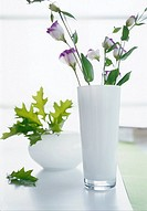 Lisianthus in a white glass vase (thumbnail)