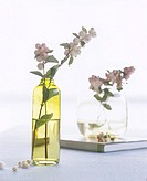 Snowberry in a glas vase (thumbnail)