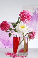 Water lilies and roses in glass vases