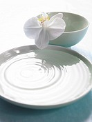Arrangement of a bowl filled with water and a orchid blossom (thumbnail)