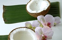 Sliced coconut and a orchid blossom