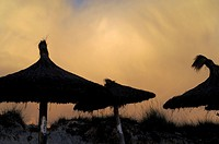 Evening mood on beach with sunshades