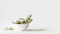 Assorted herbs in white bowl