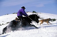 Gol, horse riding in the snow