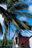 Mauritius, Rodrigues, Port-Mathurin, local corrugated house