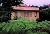 Reunion, Salazie cirque, colonial house and tree fern