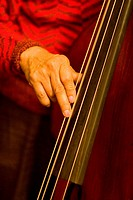 Person playing bass