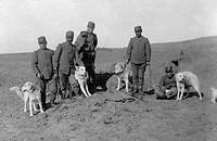 tripolitania, soldati e cani da guerra, 1912