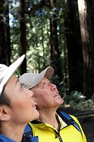 Mature couple in forest, looking up, side view, close-up