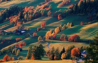 Alpine, pastures, and, trees, in, autumn, Villnoss, valley, Dolomites, South, Tyrol, Italy